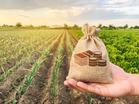 credito-rural-ministério-da-agricultura